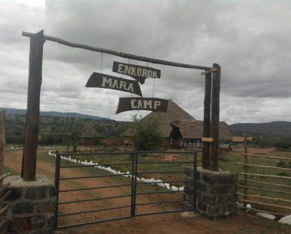 Enkorok Mara Camp Masai Mara Siana's Conservancy