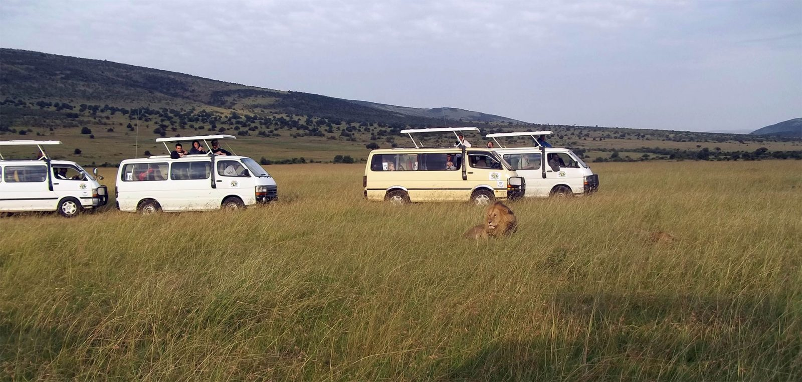 Kenya Safaris and Tours | Penfam Tours and Safaris Tours Caravan