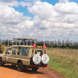 Penfan Tours 4x4 Landcruiser tour van safari drive