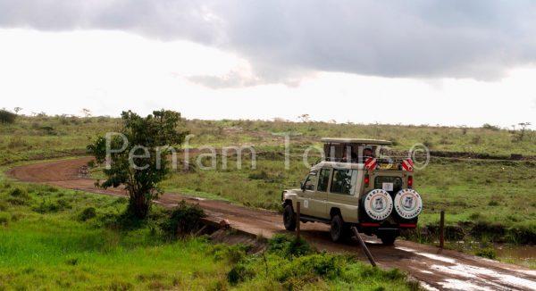 Penfam Tours and Safaris 4x4 Landcruiser Van Game Drive